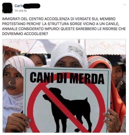 bufala-protesta-islam